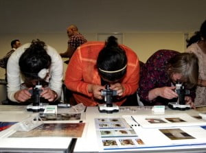 Participants of the 2011 ITP observing  pest samples during a Collections Assistant workshop.