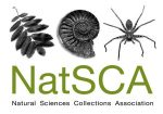 NatSCA Conference & AGM 2020 - Call for papers