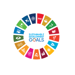 The Missing Pillar – Culture's Contribution to the UN Sustainable Development Goals